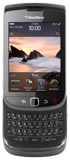 12402-blackberrytorch9800